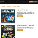 Promotions and bonuses at this site