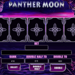 Additional game in this slot machine