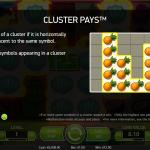 Description of Cluster Pays