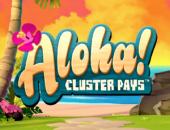 Aloha official logo