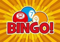 What Is Gambling Bingo All About?